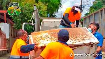 Realizan jornada de limpieza en el corregimiento de Betania - TVN Panamá