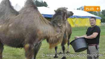 Corona: Manege dicht für gestrandeten Zirkus in Rain - Augsburger Allgemeine