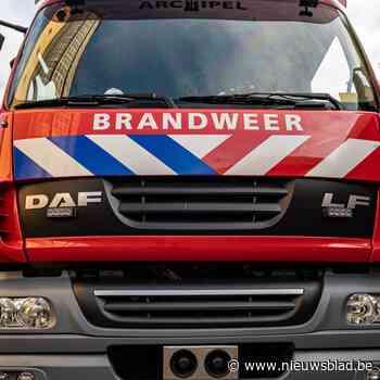 Bewoner in shock naar ziekenhuis bij brand in flat - Het Nieuwsblad