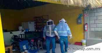 Enjambre de abejas ataca a una familia en Ciudad Valles - Pulso de San Luis