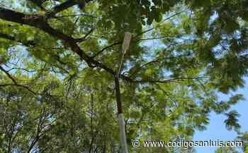 Llega la luz a la delegación Rascón, en Ciudad Valles - Código San Luis