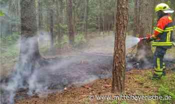 Wald bei Oberndorf brannte - Region Kelheim - Nachrichten - Mittelbayerische