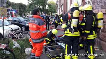 Feuerwehr rettet neun Katzen +++ Holzhütten-Brand in Friedrichsdorf +++ Topmodel-Siegerin aus Hessen - hessenschau.de