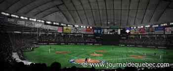 Japon: le baseball est de retour