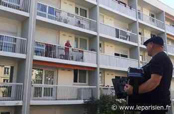 A Morangis, Jean-Luc joue de l'accordéon sous le balcon des aînés confinés - Le Parisien