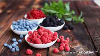 Tarnos : Les fruits rouges arrivent dans nos assiettes - France Bleu
