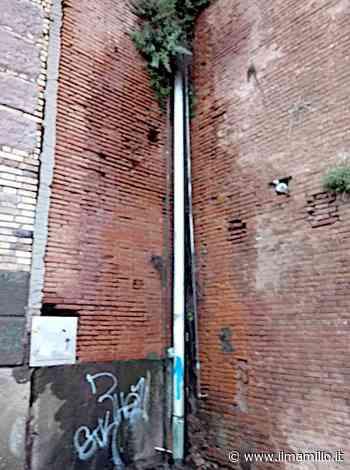 Frascati - Pericolosa perdita di acqua sul muro di contenimento di piazza San Rocco - ilmamilio.it - L'informazione dei Castelli romani