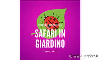 """Frascati Scienza lancia una grande iniziativa: """"safari in giardino"""" – senza andare in Africa - L'agone"""
