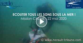 LE CAP D'AGDE - A l'écoute des sons sous-marins du littoral agathois - Hérault-Tribune