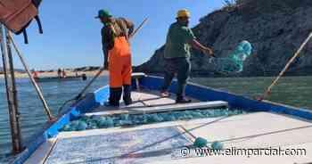 Dura cuatro días aguamala en sector Guaymas-Empalme - ELIMPARCIAL.COM