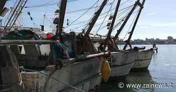 Chioggia (VE), la crisi del settore della pesca - TGR Veneto - TGR – Rai