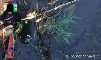 Cerveteri, si lancia dal ponte: salvato dai vigili del fuoco - BaraondaNews