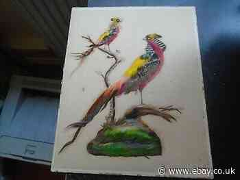 Antique Art, 2 Birds with Real Feathers, Miniature Taxidermy, Stunning Colours