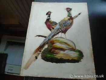 Antique Art, 2 Birds (possibly pheasants) with Real Feathers, Minimal taxidermy