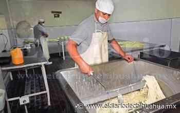 Queseros de Delicias al borde de la bancarrota - El Diario de Chihuahua