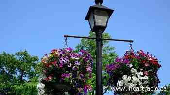 Hanging baskets will return to Niagara-on-the-Lake after all - Newstalk 610 CKTB (iHeartRadio)