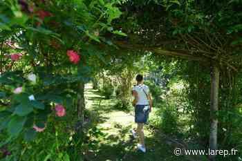 Aux Jardins de Roquelin, à Meung-sur-Loire, le bonheur est en fleurs - Meung-sur-Loire (45130) - La République du Centre