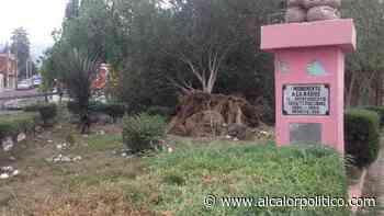 """""""Tolvanera"""" provocó daños en la zona centro de Perote, la tarde de este sábado - alcalorpolitico"""