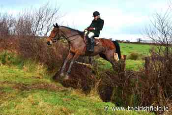 FEATURE: Immersed in hunting, breeding and equestrian sports - The Irish Field