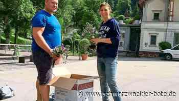 Bad Wildbad: Kurpark-Blumen finden zahlreiche Abnehmer - Bad Wildbad - Schwarzwälder Bote