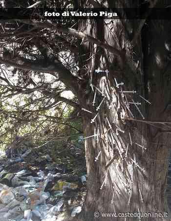 """Cagliari, """"il viale della morte"""": a un passo dal parco di Monte Claro, siringhe metadone e puzza insopportabile - Casteddu on Line"""
