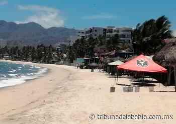 Reactivación turística de Puerto Vallarta, un reto conjunto - Noticias en Puerto Vallarta - Tribuna de la Bahía