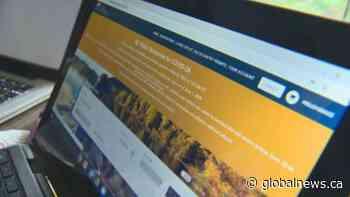 Record demand for camp sites crashes B.C. Parks online reservation system
