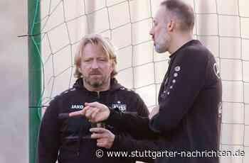 Sportdirektor und Trainer des VfB Stuttgart - Sven Mislintat und Pellegrino Matarazzo: Ziemlich beste Freunde - Stuttgarter Nachrichten