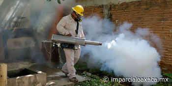 Combaten Covid-19 y dengue en Tehuantepec - El Imparcial de Oaxaca