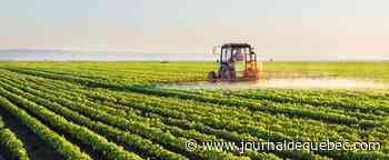 Plus de 9 M$ pour financer des emplois pour les jeunes en agriculture