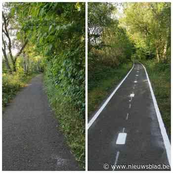 Felle discussie over belijning voor fietsers op wandelpad - Het Nieuwsblad