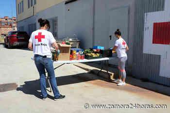 Cruz Roja en Zamora ha prestado ayuda a más de 12.300 personas vulnerables durante la crisis del coronavirus - Zamora 24 Horas