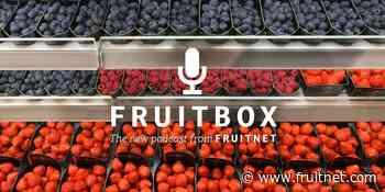 Fruitbox: The secret of berries' success