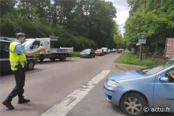 Fontainebleau. Les gendarmes dressent 83 PV en forêt ce dimanche - actu.fr