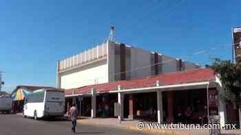 Comerciantes de Navojoa están molestos por permtir venta de cerveza pero no de sus negocios - TRIBUNA