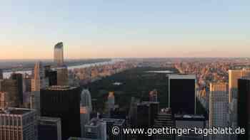 Wirbel um Rassismus-Vorfall im New Yorker Central Park