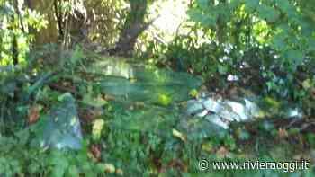 """Lastre di vetro abbandonate in campagna a Monteprandone. Loggi: """"L'inciviltà non era in quarantena"""" - Riviera Oggi - Riviera Oggi"""