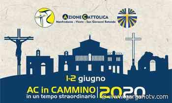 Domani tappa a Vieste - Azione Cattolica in cammino, pellegrinaggio unitario del 2 giugno - Garganotv