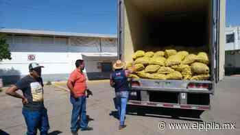 Entregan también despensas de vegetales a zonas vulnerables de Guanajuato - Gabriel Gutiérrez Rubio