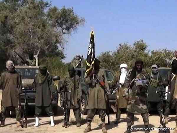 Boko Haram razes 90 houses, Church, clinic, shops in Borno communities