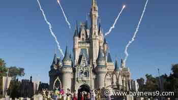 Disney World, SeaWorld to Present Reopening Plans to Task Force