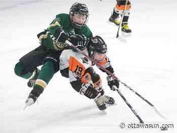 WARREN: When minor hockey comes back, it will look a lot different - Ottawa Sun