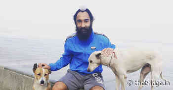 Former Indian hockey player feeds hundreds of stray dogs in Jalandhar amid lockdown - The Bridge