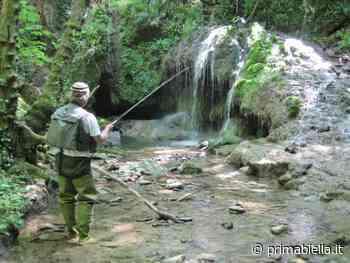 Divieto di pesca in alta Valle Cervo - Eco di Biella