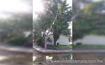 Centro de Salud de Miramar se quedó sin vacunas por falta de luz - El Sol de Tampico