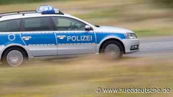 Spürhund erschnüffelt im Auto versteckte 300 000 Pfund - Süddeutsche Zeitung