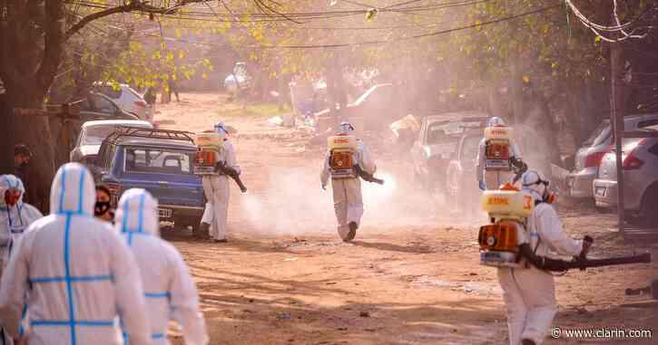 Coronavirus en Argentina: reportan 23 muertes y 600 casos en las últimas 24 horas - Clarín