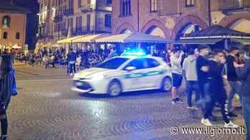 Movida a Pavia, il sindaco chiede aiuto ai giovani - IL GIORNO