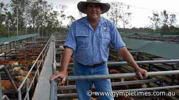 'Phenomenal' Gympie market leaves meatworks buyers short - Gympie Times