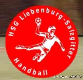 """HSG Liebenburg-Salzgitter T-Shirt """"Handball HERO"""" + 10 Euro Spende - Handball.de"""